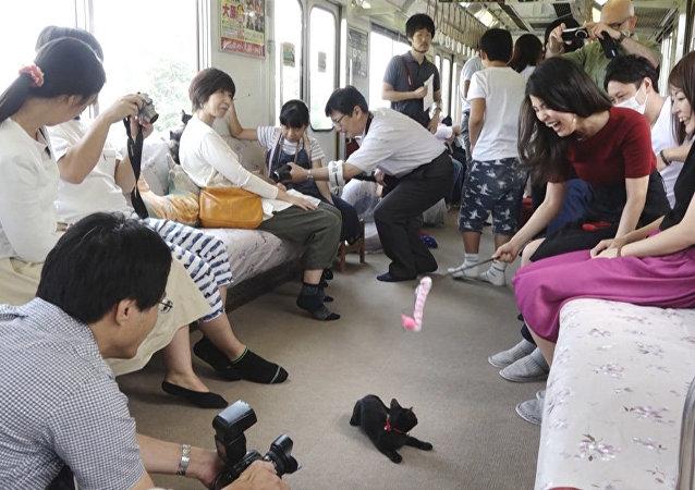 V Japonsku spustili kočíčí vlak