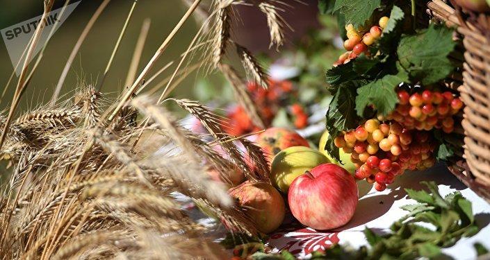 Pšenice a jablka