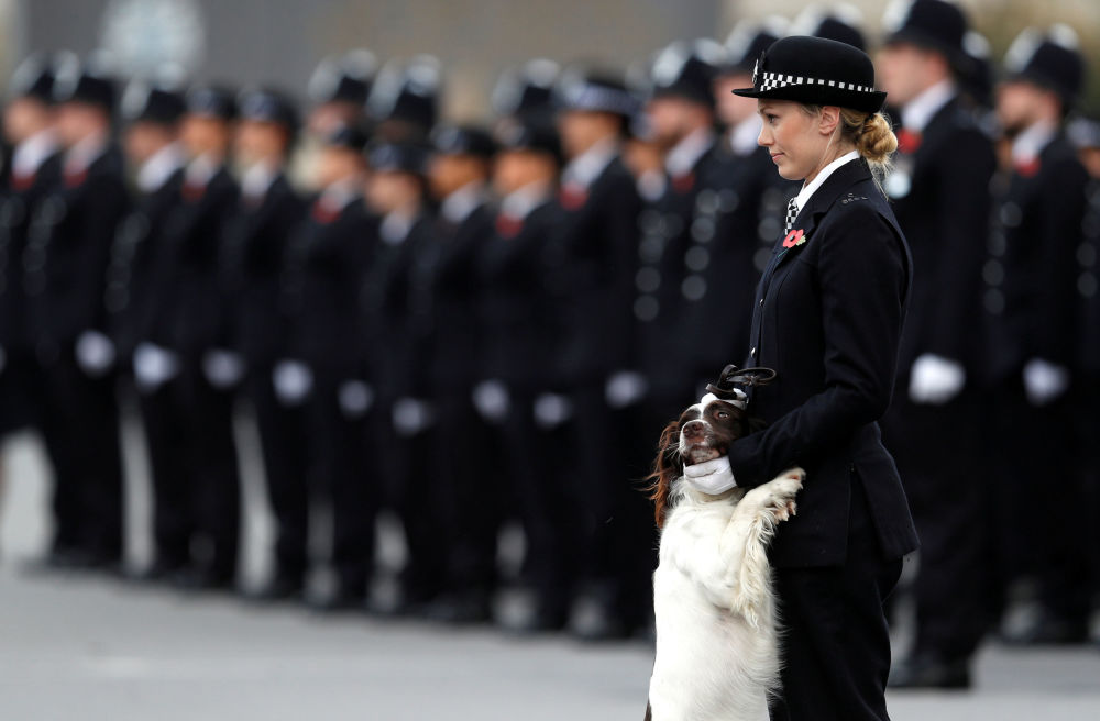 Policejní důstojnice se svým psem na přehlídce policistů v Londýně
