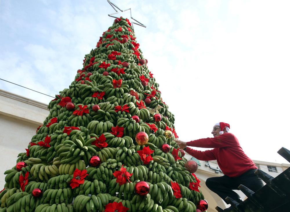 Vánoční stromek z tuny banánů v Libanonu