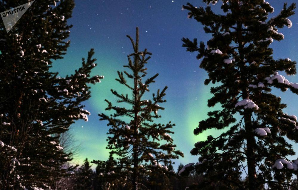 Polární záře v Murmanské oblasti