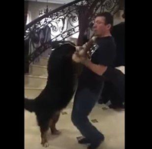 Ukrajinský generální prokurátor tančí se psem