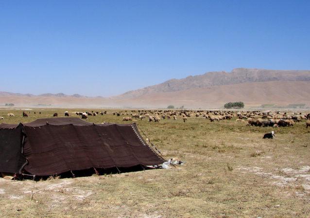 Čahármahál a Bachtijárí v Íránu