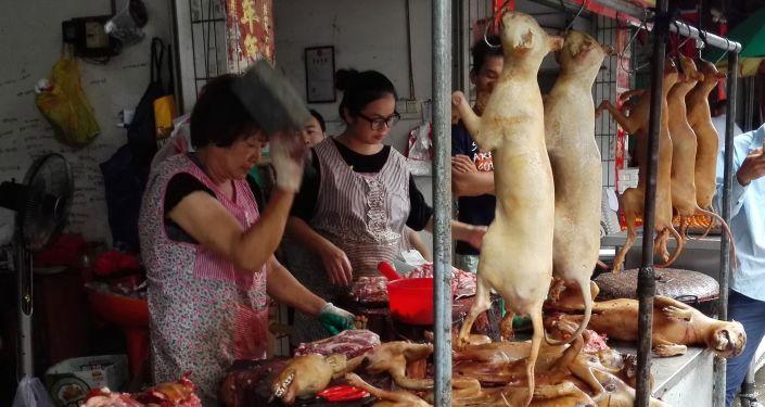 Prodej psího masa na trhu