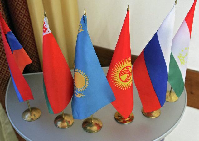 Vlajky ŠOS