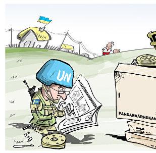 Švédsko je připraveno na odeslání vojsk na Donbas