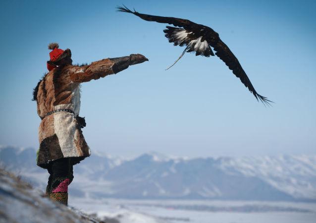 Jarní festival sokolnictví v Mongolsku