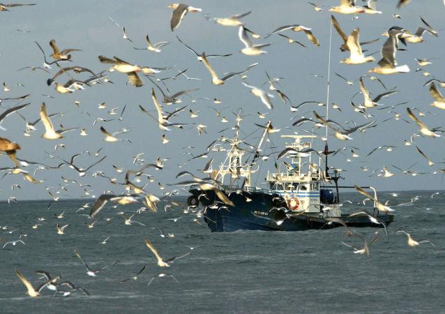 Rybářská loď. Ilustrační foto