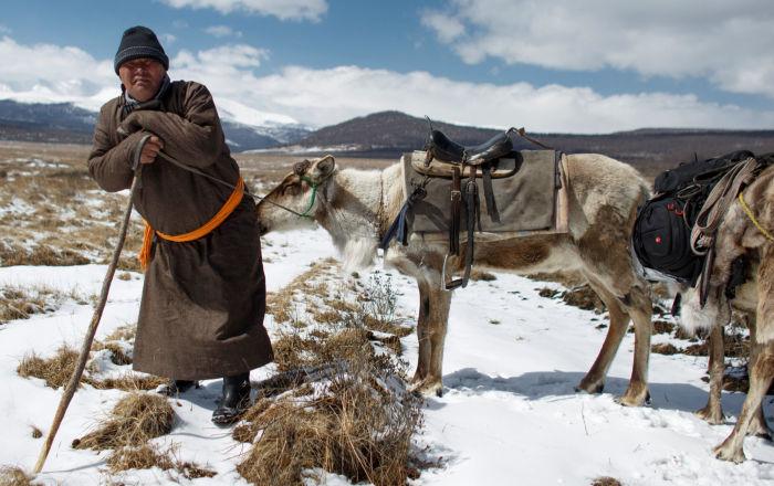 Podívejte se, jak žijí chovatelé sobů v Mongolsku