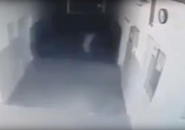 Srbka si postěžovala, že ji sledují, ale záznamy z kamer policii šokovaly