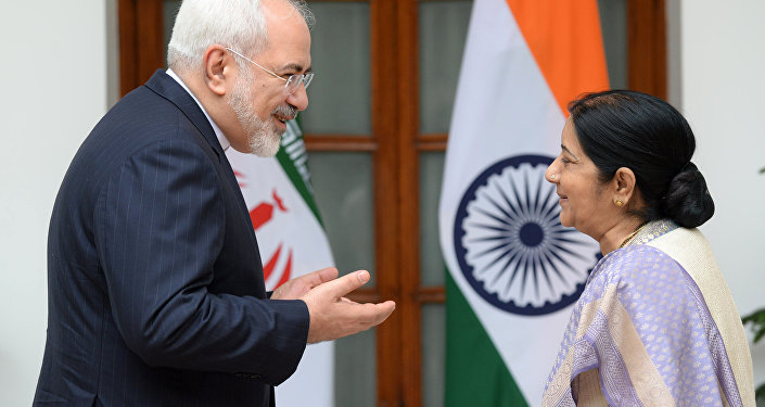 Indian Foreign Minister Sushma Swaraj (R) looks towards Iran's Foreign Minister Javad Zarif as they greet each other ahead of a meeting in New Delhi