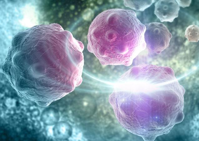 Počítačový model nádorových buněk
