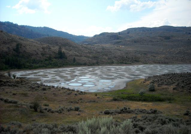 Jezero Spotted lake