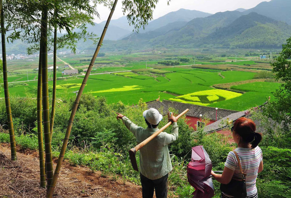 Ilustrace hvězdy a vlajky Čínské komunistické strany na rýžovém poli