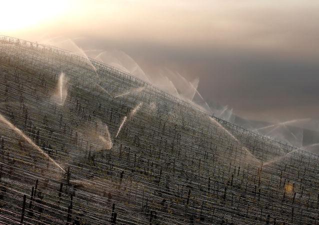 Systém zavlažování. Ilustrační foto