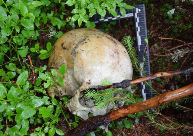 Lebka nalezená v lese nedaleko Štrby