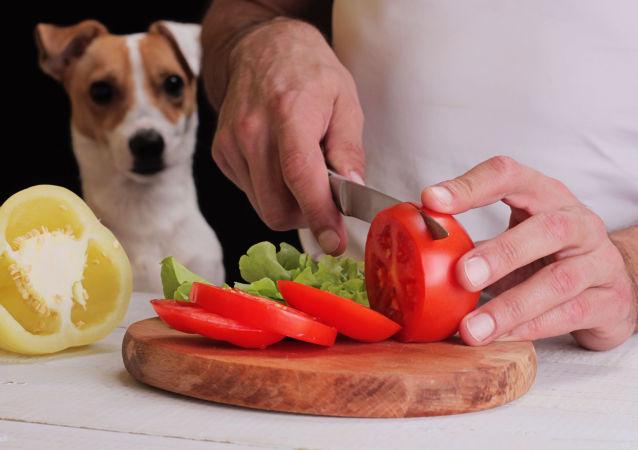 Pes se dívá na jídlo