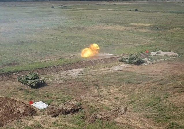 """""""Syrská hřídel"""" byla spatřena na cvičení tankistů DLR"""