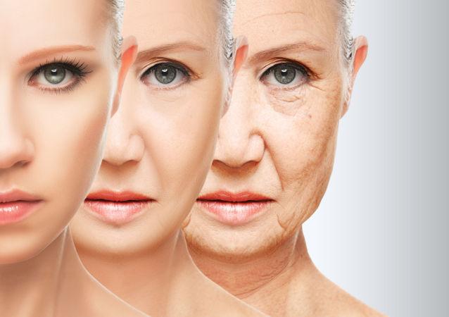 Fáze stárnutí