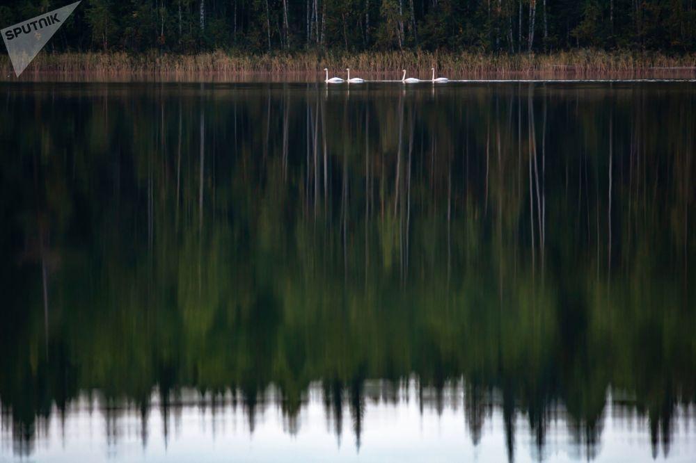 Kraj tisíců jezer. Kouzelná Karélie