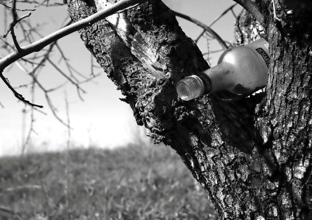 Láhev na stromě (ilustrační fotografie)