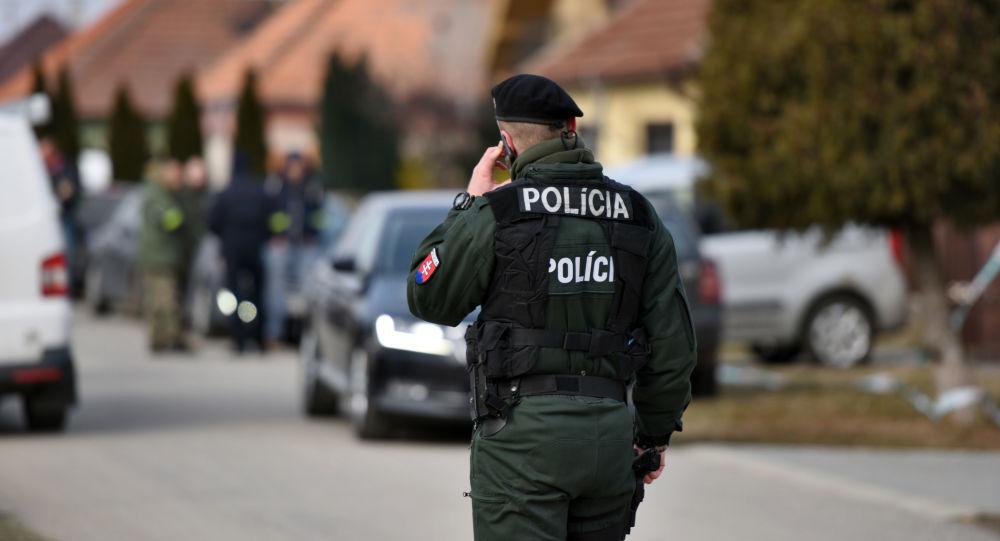 Policista, Slovensko