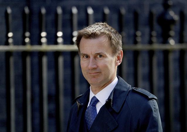 Ministr zahraničních věcí Velké Británie Jeremy Hunt