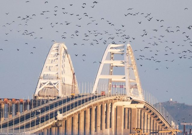 Ptáci nad Krymským mostem
