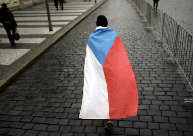 Čech s českou vlajkou. Ilustrační foto