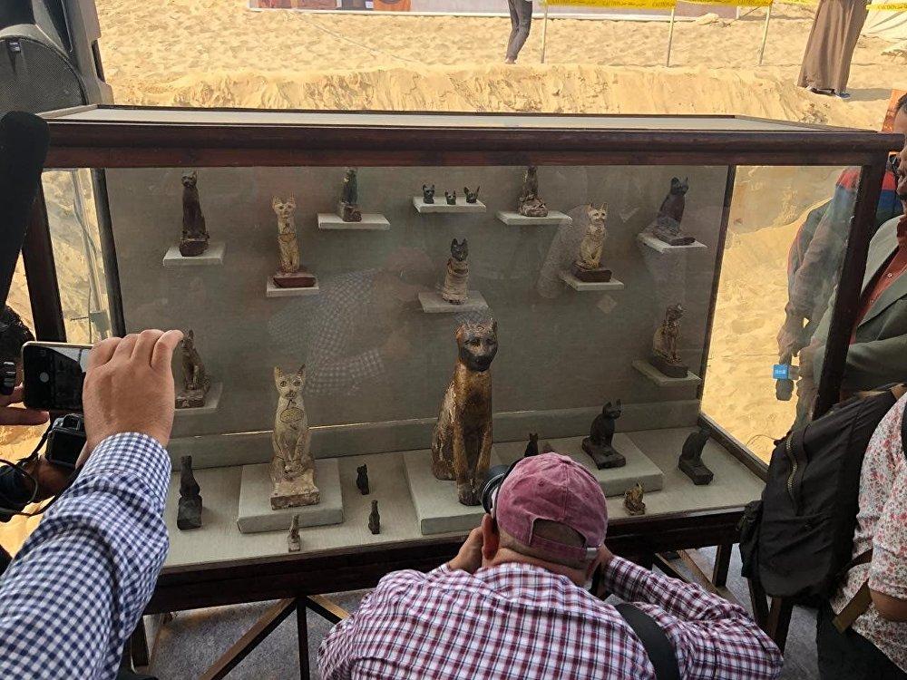 V hrobkách s největší pravděpodobností pohřbili kočky, které žily a byly ve službě před chrámy