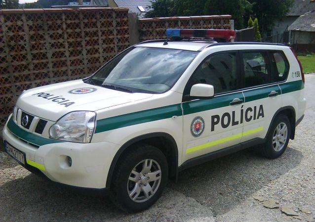 Slovenska policie