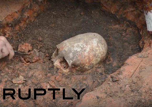Byla v Čeljabinsku nalezena lebka mimozemšťana?