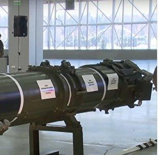 """""""Porušení smlouvy INF"""" Ruskem bylo prezentováno na ministerstvu obrany"""
