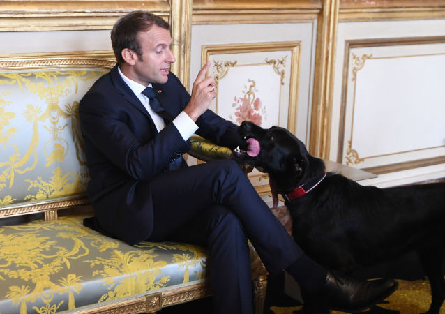Emmanuel Macron a pes Nemo