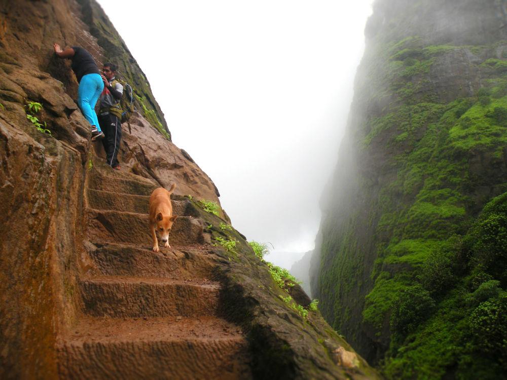 Schody na vrchol hory Kalavantin v Indii.