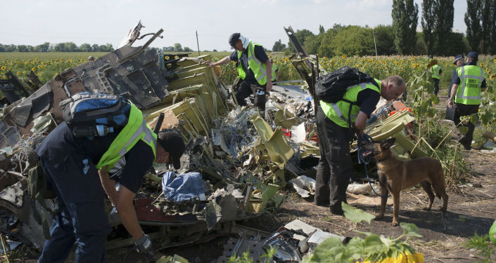 Místo havárie MH17