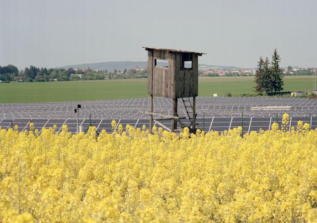 Zemědělství v Česku